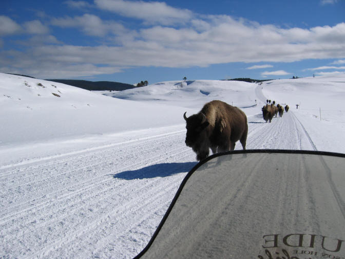 snowmobile tour package yellowstone